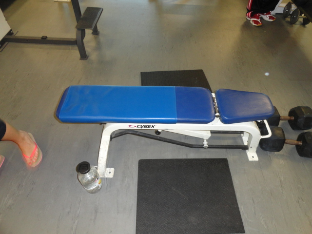 Midwest Used Fitness Equipment Cybex Adjustable Bench